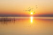 calma al amanecer