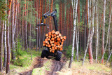Lumberjack with modern harvester working in a forest. Wood as a source renewable energy.  - 157194216