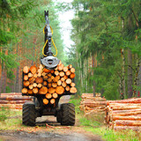 Lumberjack with modern harvester working in a forest. Wood as a source renewable energy.  - 157194446