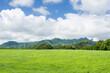 Green Hawaiian pastures