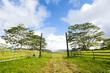 Ranch entrance in Hawaii