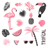 Tropical set in pink and black colors. Flamingo, toucan, watermelon, palm, leaves. Vector collection.  - 157207015