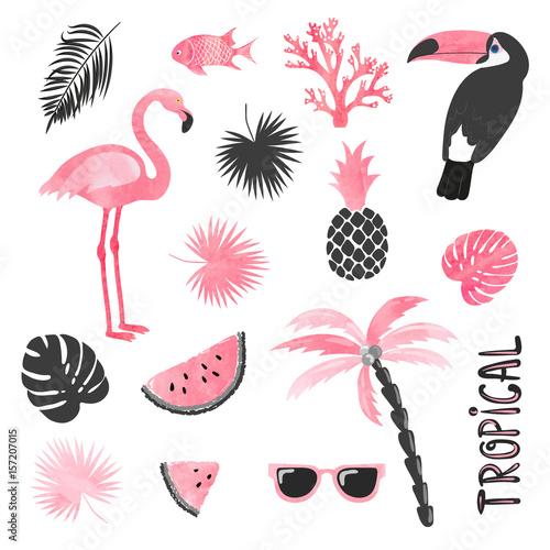 Tropikalny zestaw w kolorach różowym i czarnym. Flamingo, tukan, arbuz, dłoń, liście. Kolekcja wektorowa.