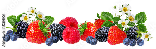 strawberry,raspberry,blackberry, bilberry, blueberries isolated on white - 157208006