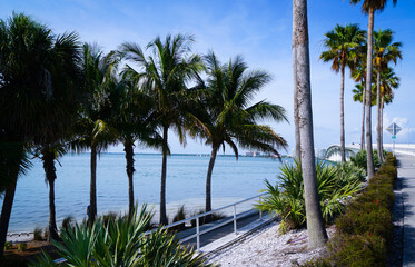 The park on Bird key is a perfect place to start your walk across the Sarasota Bay Bridge.