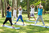 Yoga teacher and seniors in a park
