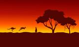At sunrise kangaroo scenery silhouettes