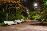 Night view of alley in the Kirov Central Culture and Leisure Park, Saint Petersburg, Russia. - 157276806