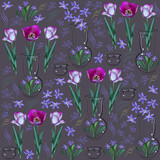 Flowers in vase. Tulips and scilla. Grey-violet background.