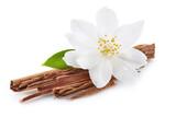 Cinnamon with jasmine