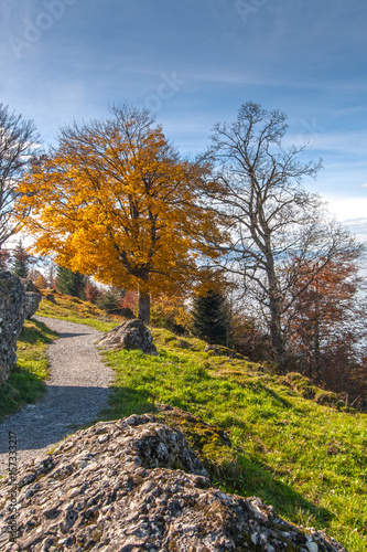 Amazing autumn landscape near Mount Rigi, Alps, Switzerland Poster