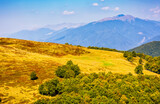 Carpathian Mountain Range in late summer