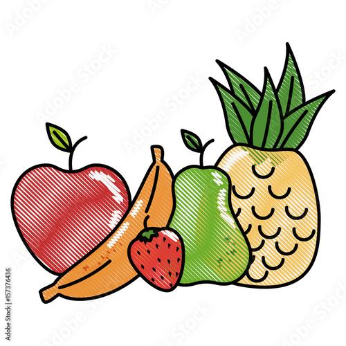 fruits food organic vector icon illustration graphic design