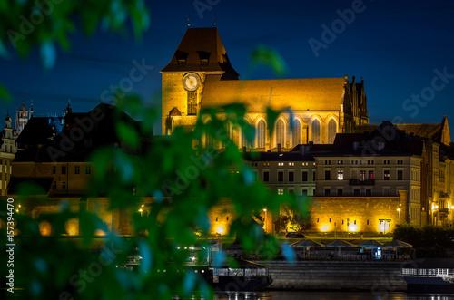 Fototapeta SS Johns' cathedral at Torun, Poland viewed through green leafs