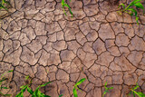 Dry corn field land with cracks, top view - 157419217