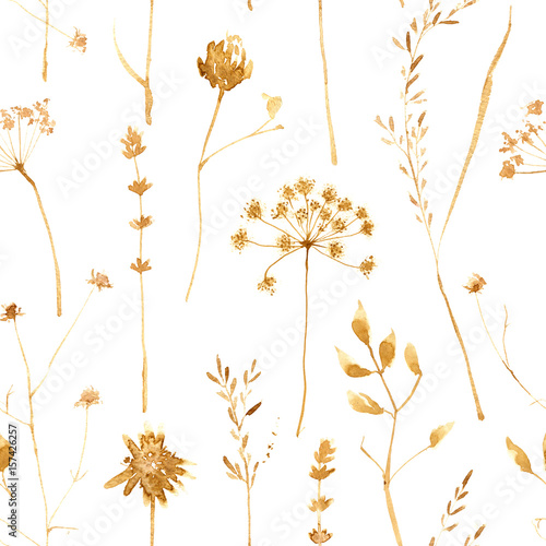Seamless pattern with dry flowers and grass isolated on white. Hand painted watercolor illustration. - 157426257
