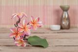 Plumeria flower on wood