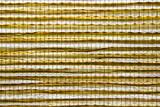 Bamboo luminous background