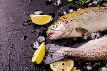 Seafood. Two raw rainbow trouts marinated with lime, rosemary
