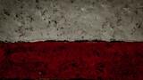 Poland, Polish flag painted on grunge stone texture