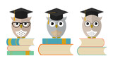 Owls in graduation cap with books. Set of cute owls icons