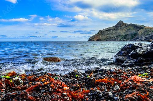 On the coast of the Black sea.