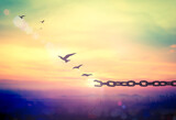 Fototapety World environment day concept: Silhouette of bird flying and broken chains at sunset background