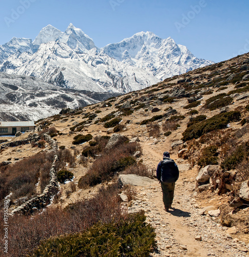 A tourist on a Himalayan trail - Periche, Nepal Poster