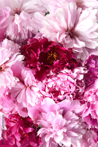 Dahlias bouquet pink