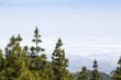 Gran Canaria, cloud layer