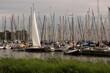 porto di zuiderzee olanda