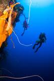 Nurkowcy nurkują nurkowanie tropikalnych ścian w Wielkim Kajmanie. Gąbkę pomarańczową można zobaczyć z sylwetką nurków przygodowych w tle