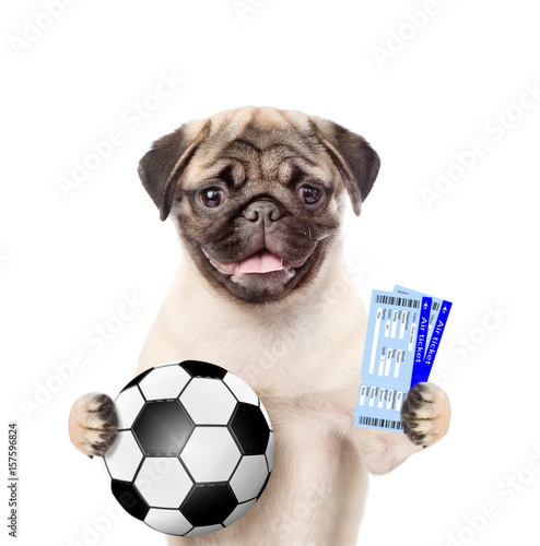 Funny puppy holding a soccer ball and tickets. Isolated on white background - 157596824