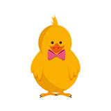 Little chicken cartoon icon vector illustration graphic design