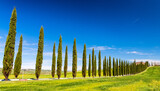 Beautiful hills of Tuscany in spring with cypresses