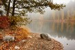 Peaceful foggy autumn lake view with vibrant fall colors in Finland