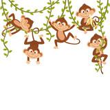 monkey on vine  - vector illustration, eps  - 157759047