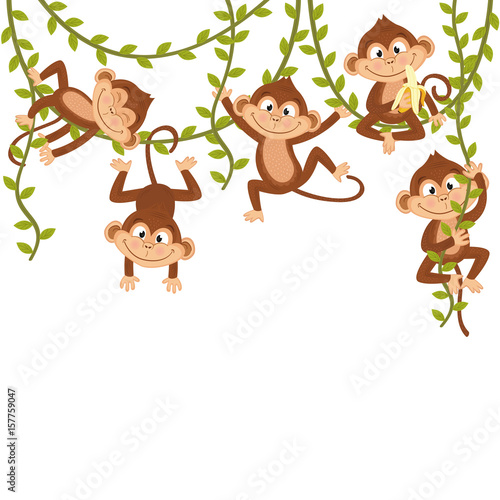 mata magnetyczna monkey on vine  - vector illustration, eps