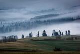 Mountains Tatra and woods in fog, Zakopane, Poland