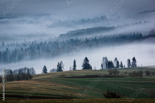 Mountains Tatra and woods in fog, Zakopane, Poland