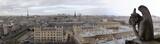 Gargolas Notre Dame