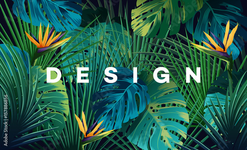 Bright tropical background with jungle plants. Exotic pattern with palm leaves. © stonepic