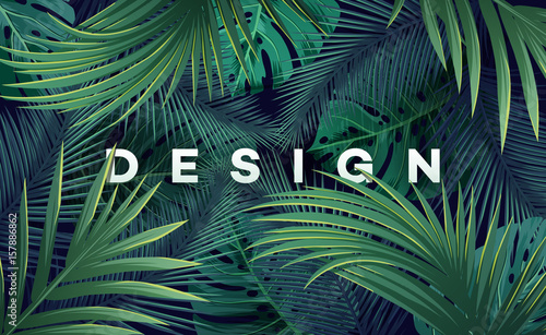 Bright tropical background with jungle plants. Exotic pattern with palm leaves. - 157886862