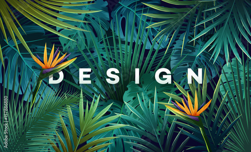 Bright tropical background with jungle plants. Exotic pattern with palm leaves. - 157886880