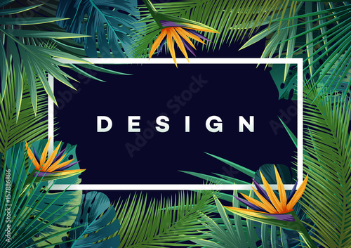 Bright tropical background with jungle plants. Exotic pattern with palm leaves. - 157886886