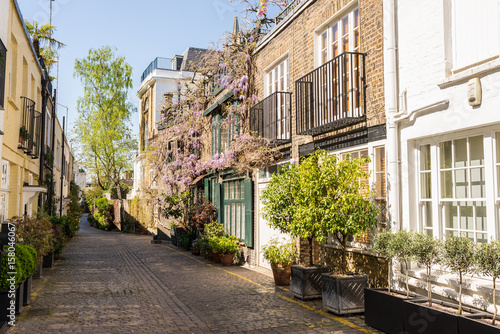 Elegant houses in a small exclusive mews with cobble stone street in South Kensi Poster