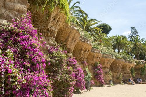 Pierre, palmiers et fleurs