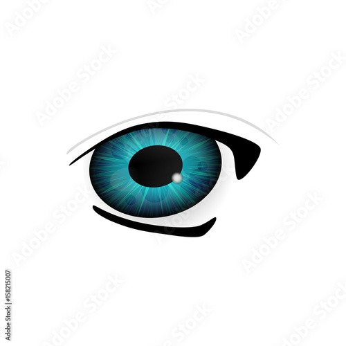 Eye. Human eyes closeup. Beautiful big eyes. Vector illustration - 158215007
