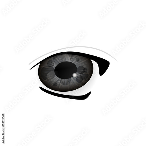 Eye. Human eyes closeup. Beautiful big eyes. Vector illustration - 158215069
