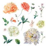 Set of vintage watercolor peonies and wildflowers - 158285894